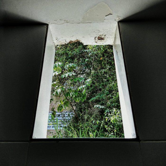 entre o teto e a parede - foto por tepha sobral